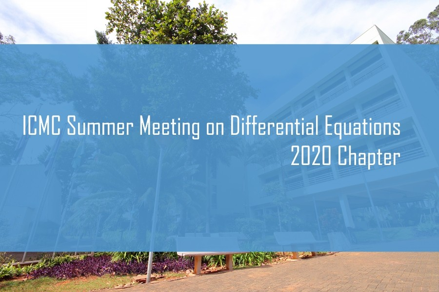 ICMC Summer Meeting on Differential Equations 2020 Chapter