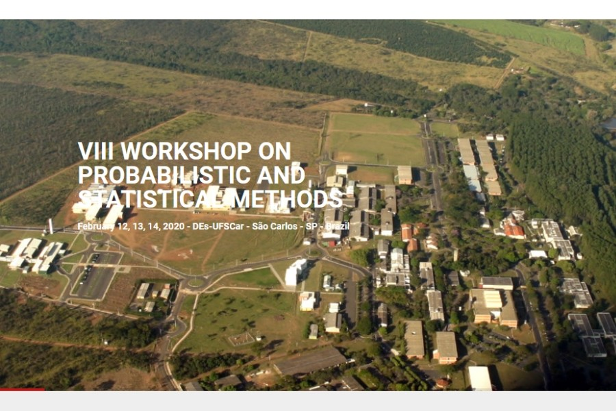8th Workshop on Probrabilistic and Statistcal Methods