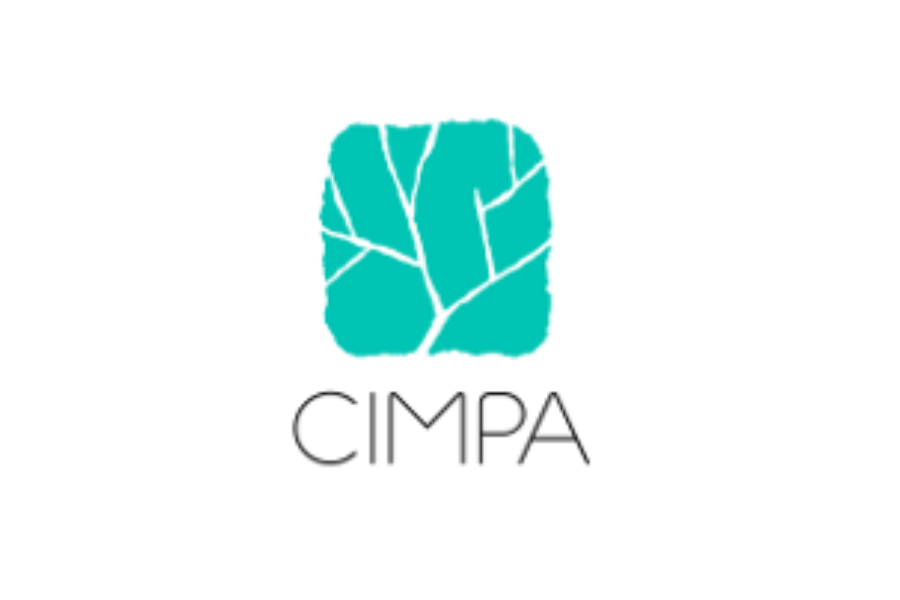 CIMPA School 2020 - Singularities and Applications